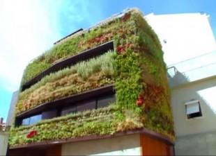 Pogledajte vilu s baštom po zidovima (video)