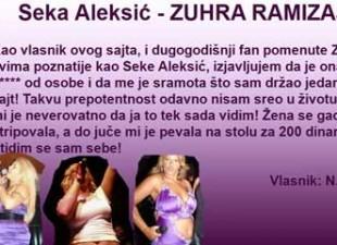 Obožavatelj grubo iskritikovao Seku Aleksić