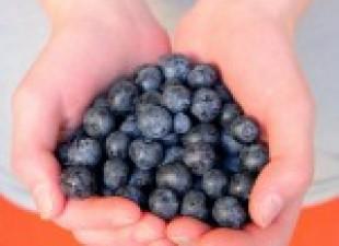 Borovnica-tako mala, a tako zdrava