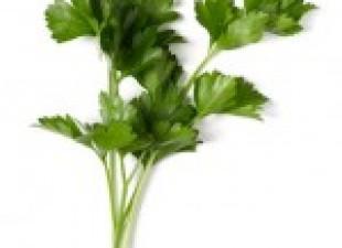 Arapska salata