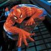 Čovek obučen kao Spiderman hvata lopove! (video)