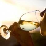 belo vino 2